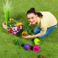 Создание удобного и красивого огорода